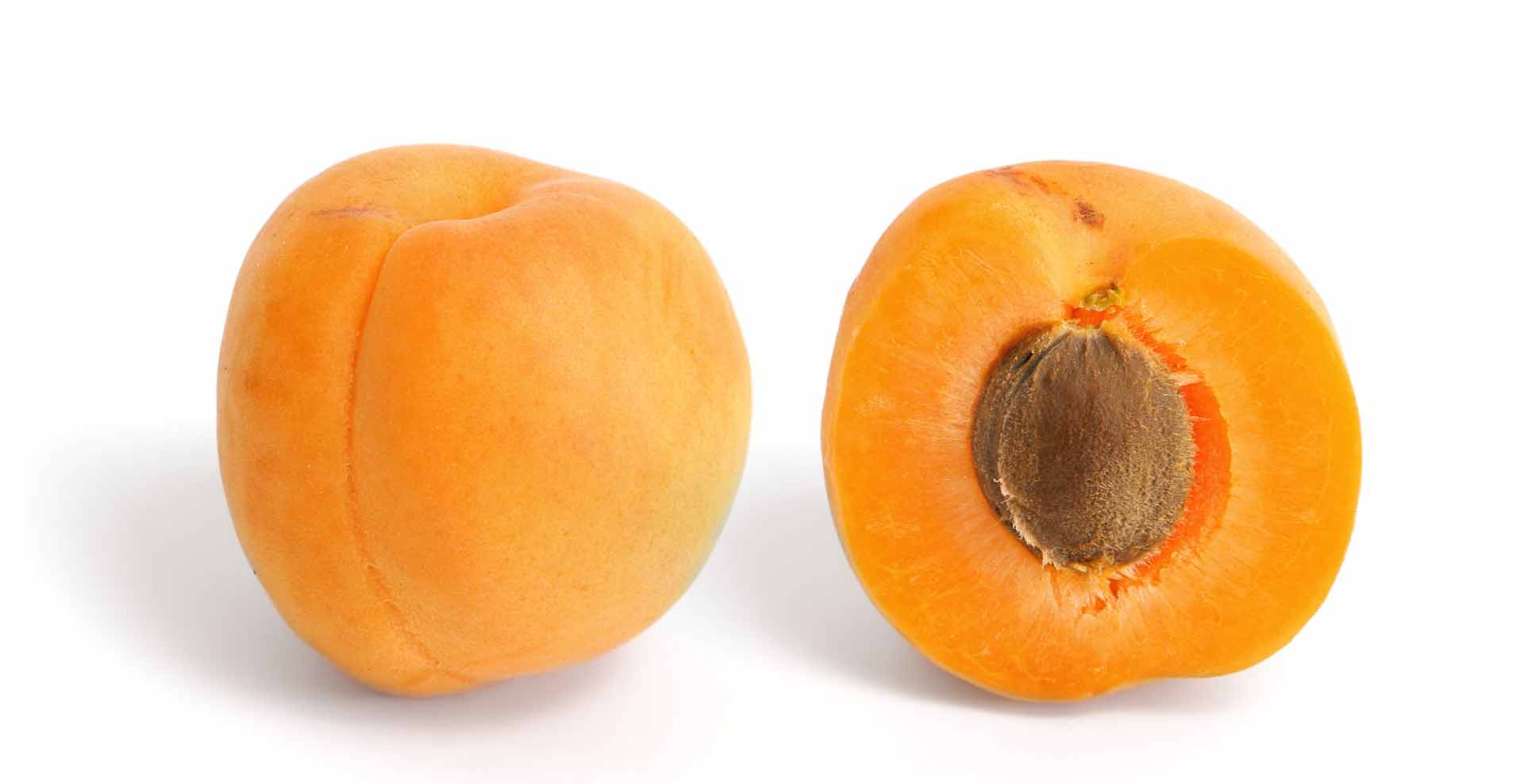 абрикос, застосування абрикоса, властивості абрикоса, лечение абрикосам,