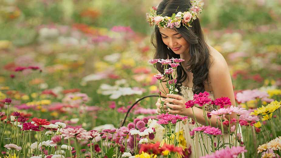стресс, природа, лечебные травы, фитотерапия
