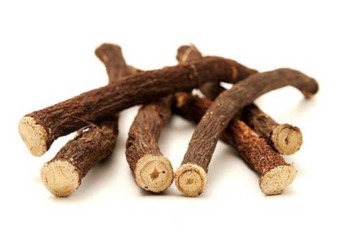 корінь соняшника, властивості кореня соняшника, застосування кореня соняшника